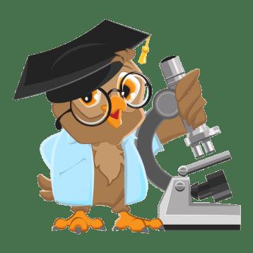Примеры методов исследования дипломной работы