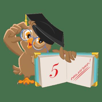 Стоимость хорошего отчета по практике