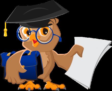 Сроки и места прохождения преддипломной практики